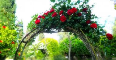 Арка для цветов своими руками