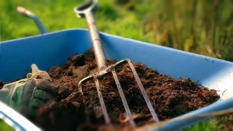 Зимостойкость и морозоустойчивость растений, равнозначная замена удобрений