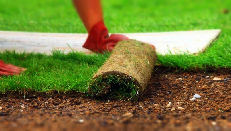 Как укладывать рулонный газон и выполнять профилактику дефектов его покрытия