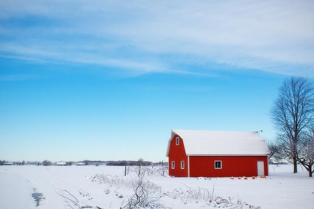 зимний сарай, снег, сельских районах
