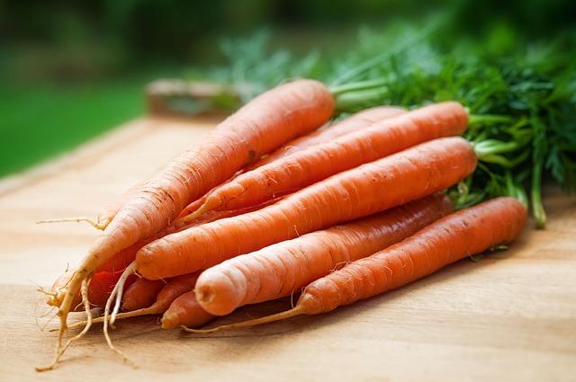 сельское хозяйство, морковь, крупным планом