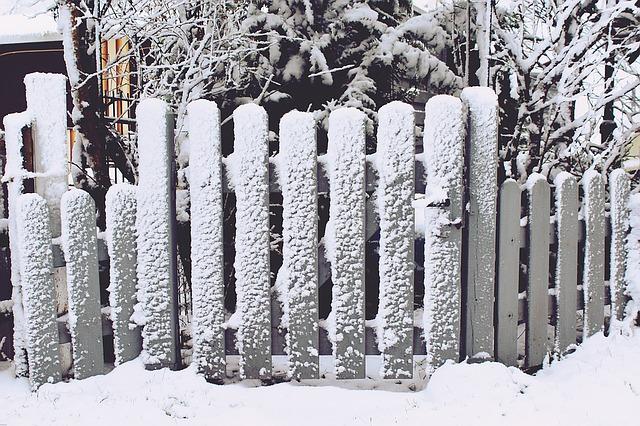 забор, снег, серый
